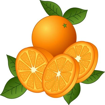 naranja caricatura: Jugosas naranjas Vectores