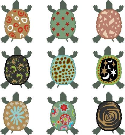 Safari Turtle Vector