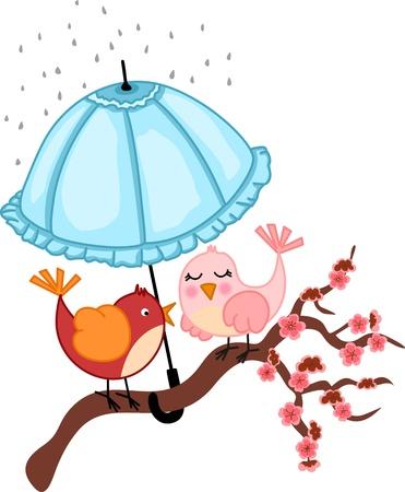 Birds lovers to rain Stock Vector - 15089034