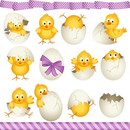 Easter eggs chicks Illustration