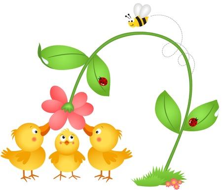 Pequeños polluelos admirando una flor