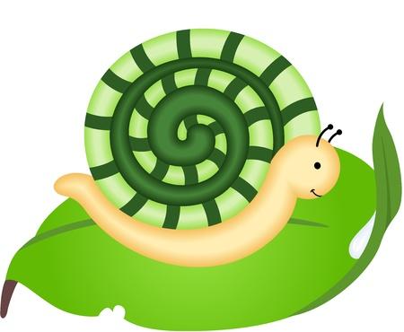 slowness: Snail on leaf Illustration