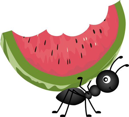 watermelon slice: Ant Carrying Watermelon Illustration