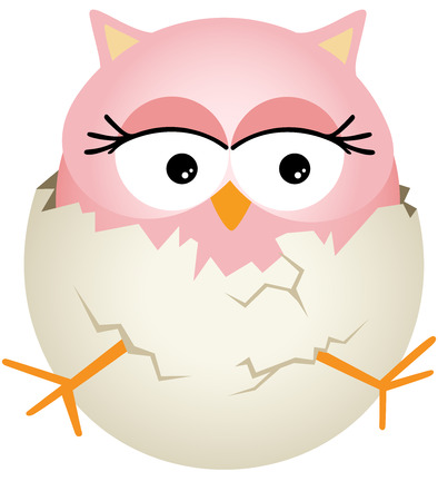 owls: Pink Baby Owl in Egg