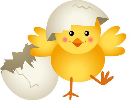 Polluelo Dejando huevo agrietado