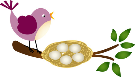 Bird with Eggs in a Nest on a Branch Vector