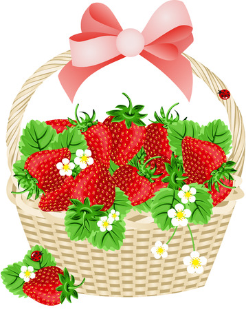 Strawberries in a Basket Vector