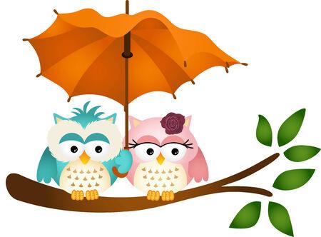 Owls under umbrella Vector