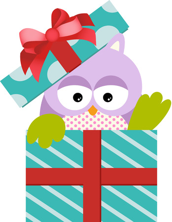 Cute Owl in Gift Box Vector
