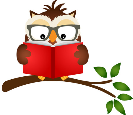 cartoon reading: Owl reading a book on tree branch Illustration