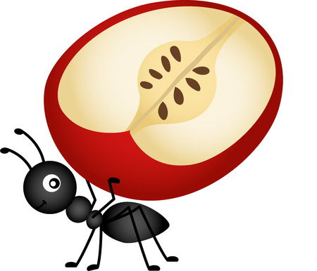 Ant carrying apple slice Vector