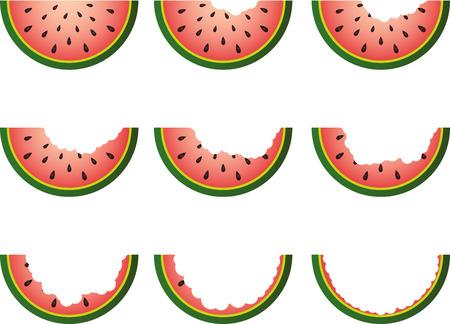 Steps Eating Slice Watermelon Vector