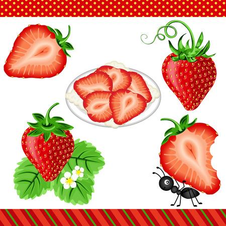 cartoon strawberry: Strawberry Digital Clipart