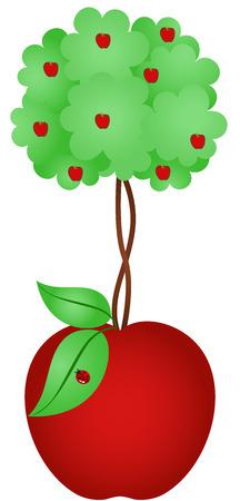 tillage: Apple Tree Apple