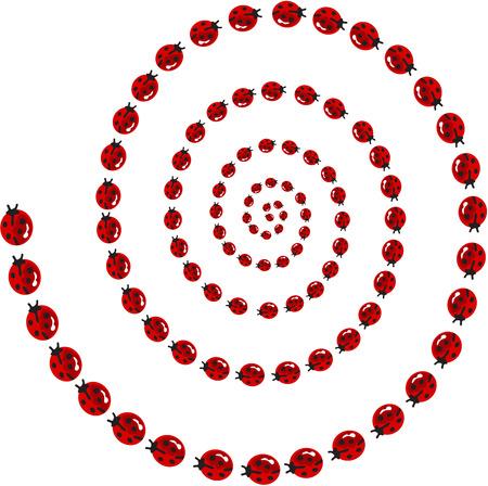 Ladybird spiral Vector