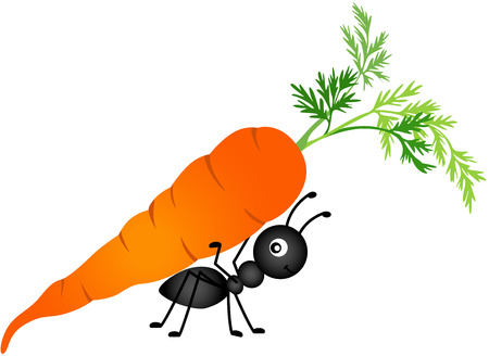 carrots isolated: Ant Carrying Carrot