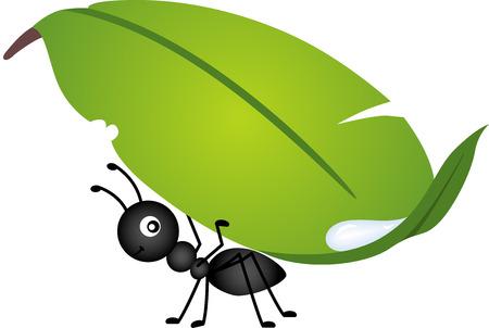 hormiga caricatura: Hoja que lleva de la hormiga Vectores