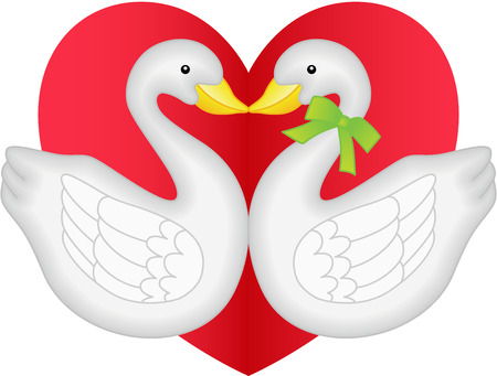 swan: Swan couple in love