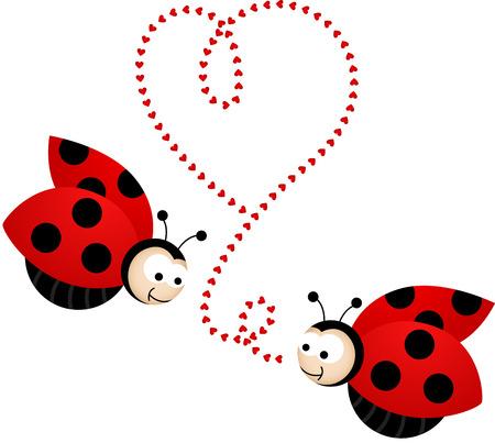 Two cute ladybirds in love