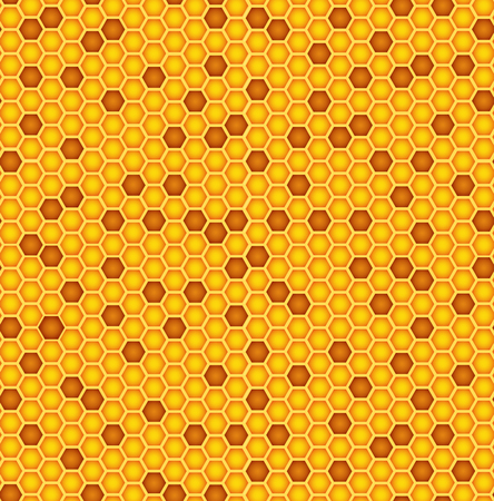apiculture: Honeycomb texture background