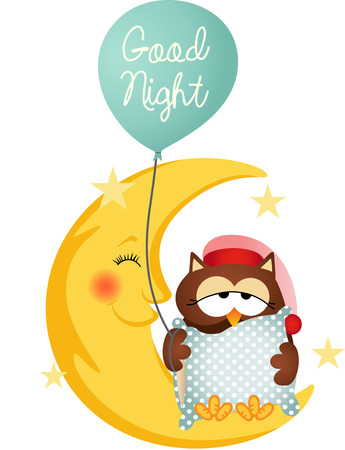sleeping animals: Good night owl holding a balloon Illustration