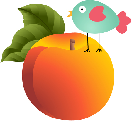 Bird on peach