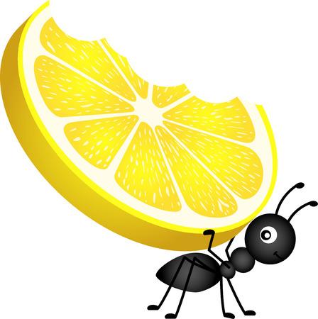 hormiga caricatura: Hormiga cargando un limón Vectores