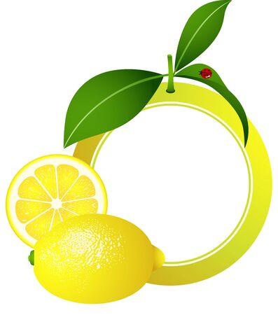 limon caricatura: Marco de limón Photo Vectores