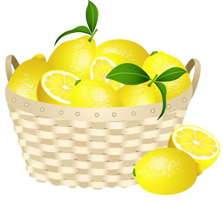 fruit basket: Lemons in a basket Illustration