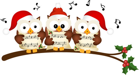choir: Christmas owls choir singing