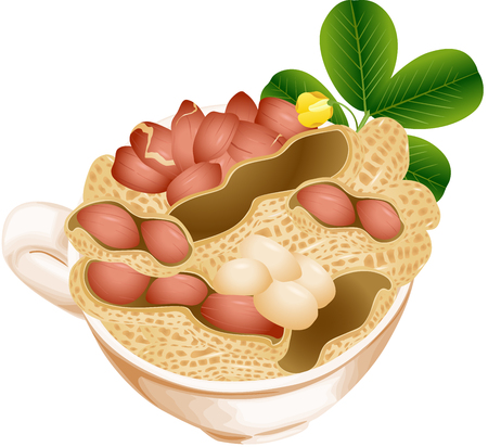 nut: Cup with peanuts Illustration