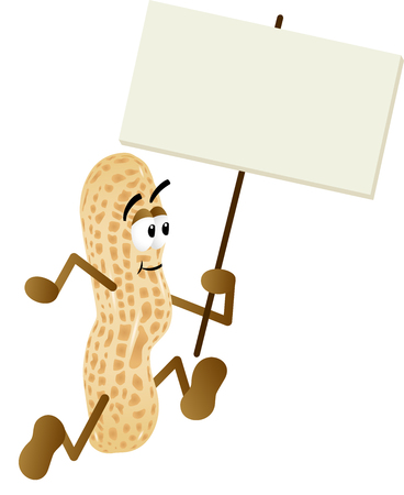 isolated ingredient: Peanut holding blank signboard Illustration