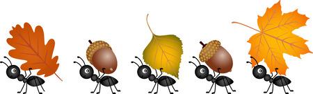 Mrówki przewożących jesienią liści i żołędzi Ilustracje wektorowe