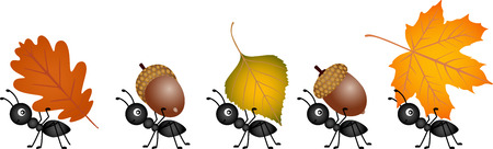Ants carrying autumn leaves and acorns