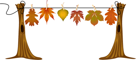 dry: Autumn leaves hanging to dry Illustration