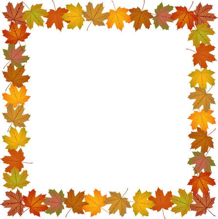 fall leaves: Fall leaves frame
