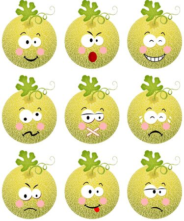 melon fruit: Cantaloupe melon with feature a different expression Illustration