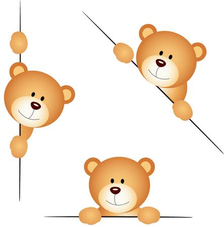 Teddy bear peeking from behind in various positions
