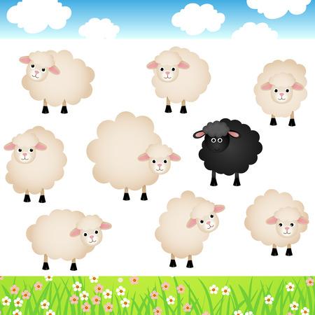 black sheep: Cute Sheep Set Illustration