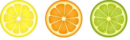 citrus fruit: Citrus fruit slices
