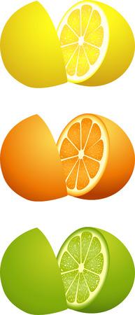 citrus fruit: Citrus fruit cut in half