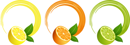 citrus fruit: Citrus fruit round frame