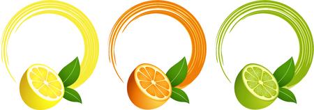 Citrusvruchten rond frame