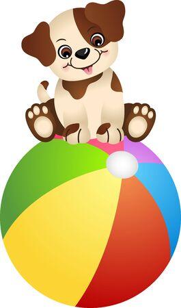 Cute dog sitting on beach ball