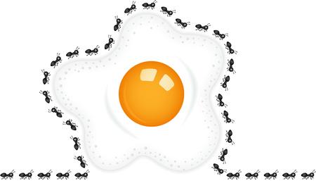 fried: Ants around a fried egg