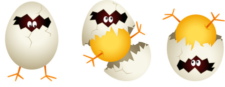 broken eggs: Chick cracked egg shell Illustration