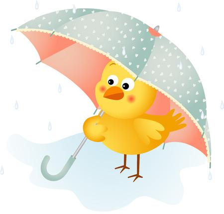Chick in the rain with umbrella