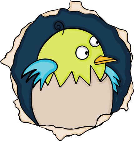 Cute baby bird in the hole.