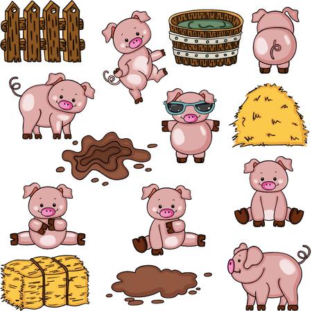 Ensemble de collecte de porcs de ferme