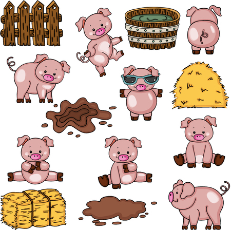 Farm pig collection set